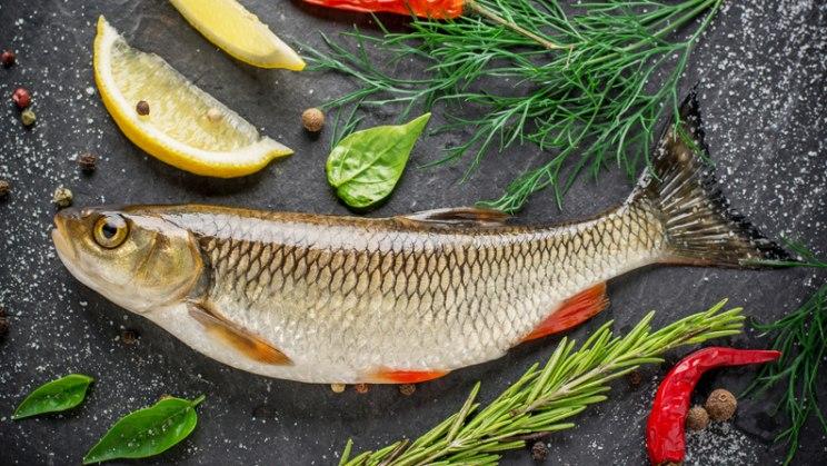 Fisch liefert gesunde Fettsäuren, aber auch Vitamine