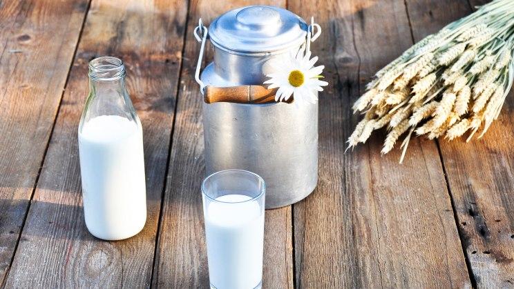 Milchprodukte gibt es auch als fettarme Varianten