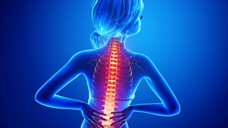 Rückenschmerzen - wirksame Hausmittel und Tipps