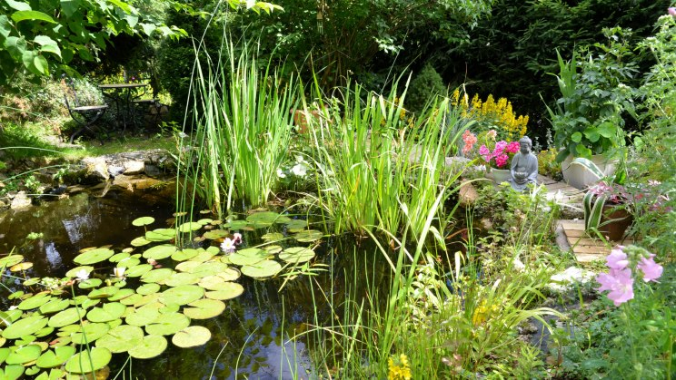 Folienteich selber anlegen for Naturgarten gestalten
