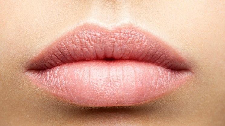 Lippenherpes - Sepia officinals als homöopathisches Mittel