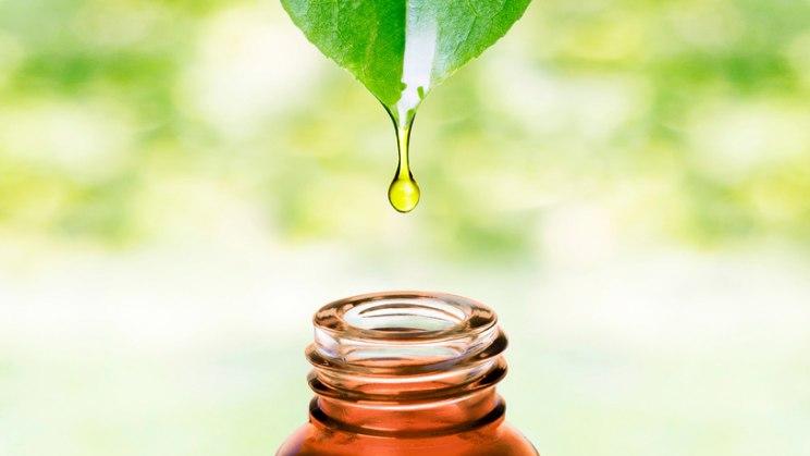 Tropfen mit Ölfläschchen: Mandelöl enthält viel Ölsäure und pflegt die Haut