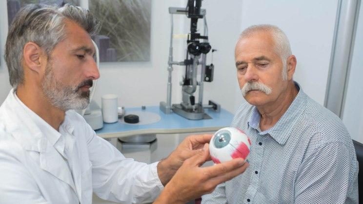 Im Aufbau des Auges greifen mehrere Bestandteile perfekt ineinander.