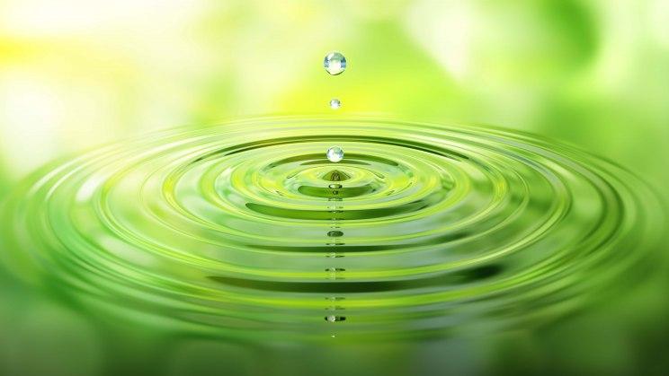 Tropfen verursachen Kreise im Wasser – wie kann man eine gute Wasserqualität erkennen?