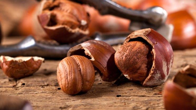 Nüsse sind zwar fettreich, aber auch gute Vitaminspender