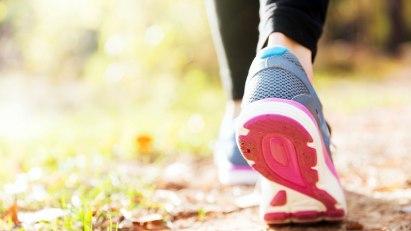 Walking - fit durch flottes Spazieregehen