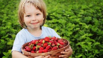 So ernähren Sie Ihr Kind gesund