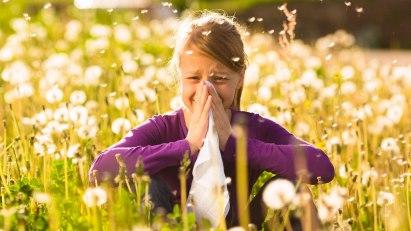 Kreuzallergie - allergisch auf Pollen und Lebensmittel