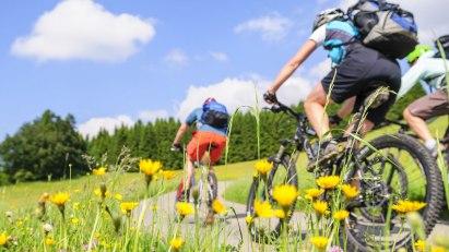 Radfahren hilft beim Abnehmen