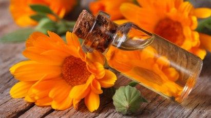 Ringelblume bei Prellungen und Zerrungen
