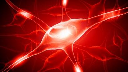 Nervenzelle: Guillain-Barré-Syndrom - Angriff auf die Nerven