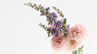 Gegen leichte Erektionsstörungen können auch homöopathische Mittel helfen. Welche das sind, zeigt die Bildergalerie.