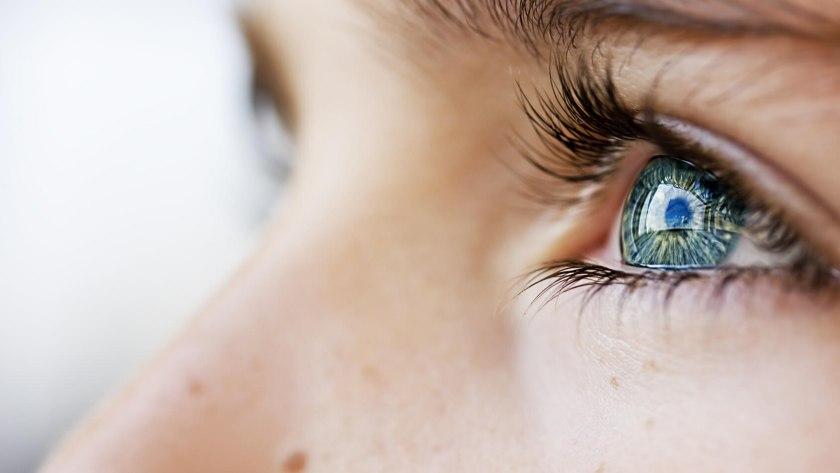 Das Auge ermöglicht den komplexen Vorgang des Sehens